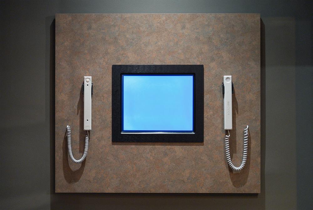 Monitor, 2010