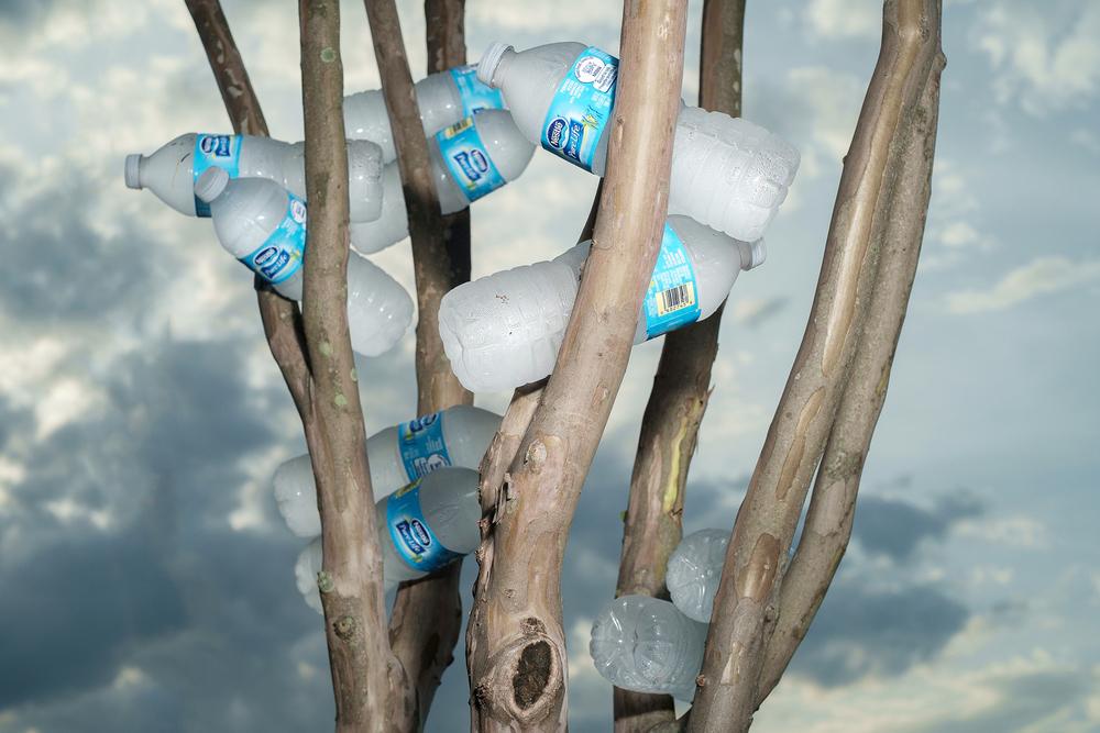 Water Bottles, 2015