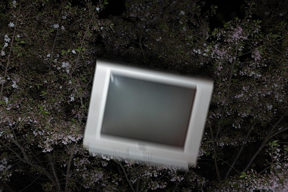 Television, 2015