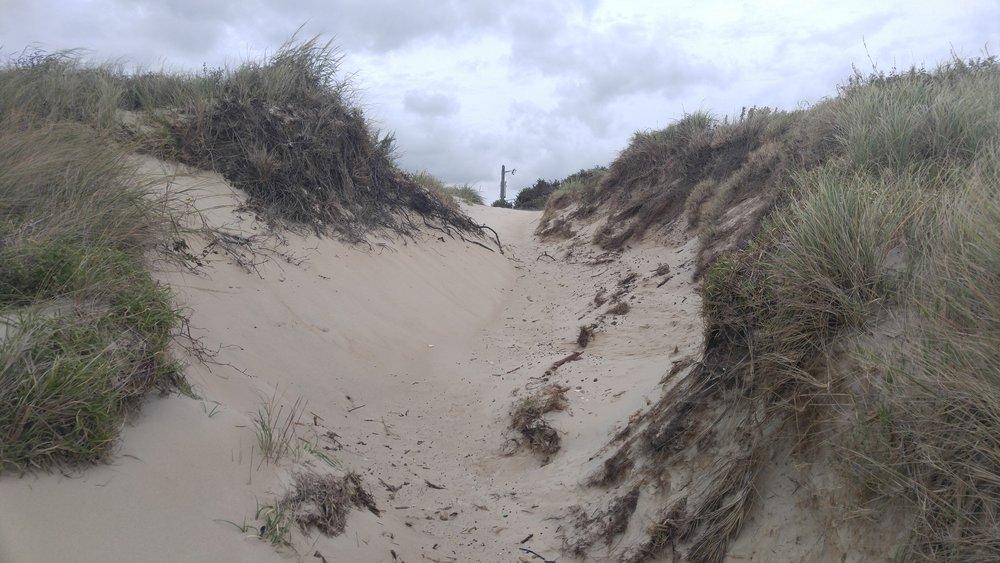 9th Bay Beach Access