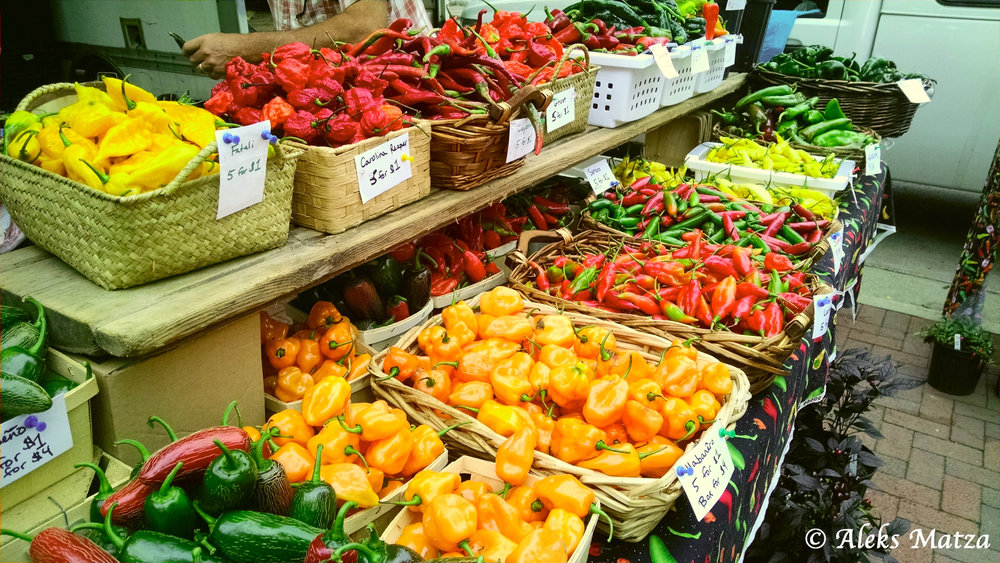 Madison Market 2.jpg
