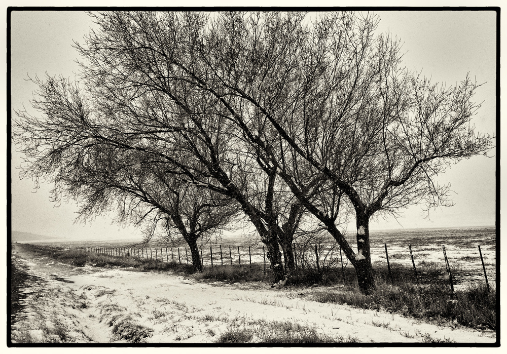 Snow in Chino Valley