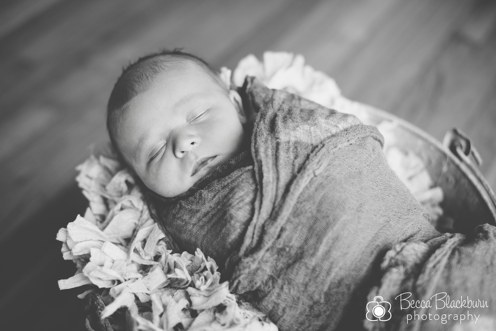Smith newborn-3.jpg