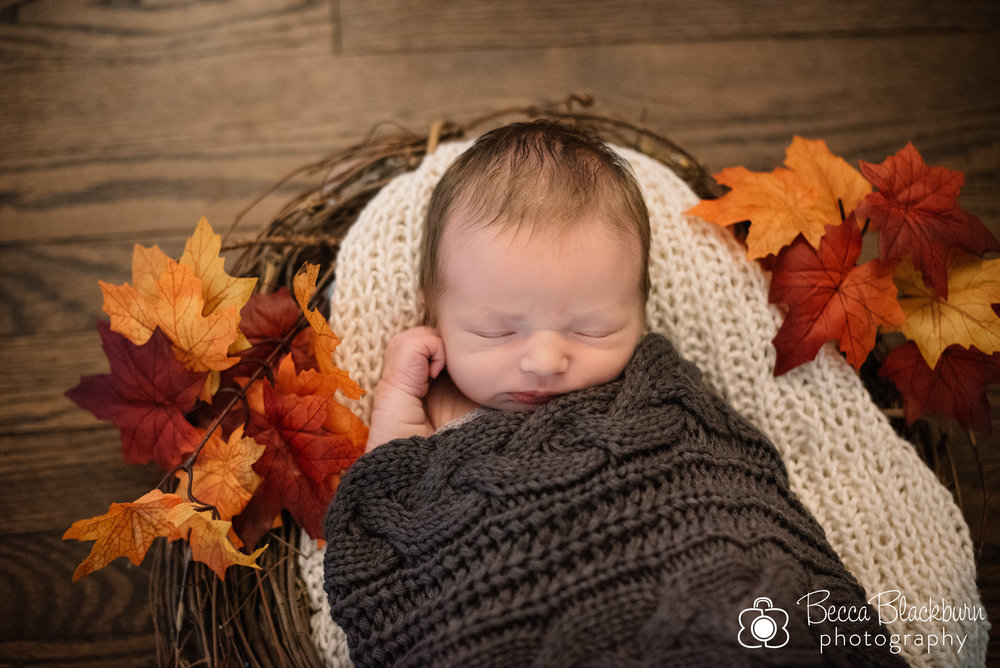 Kronberg newborn2-2.jpg