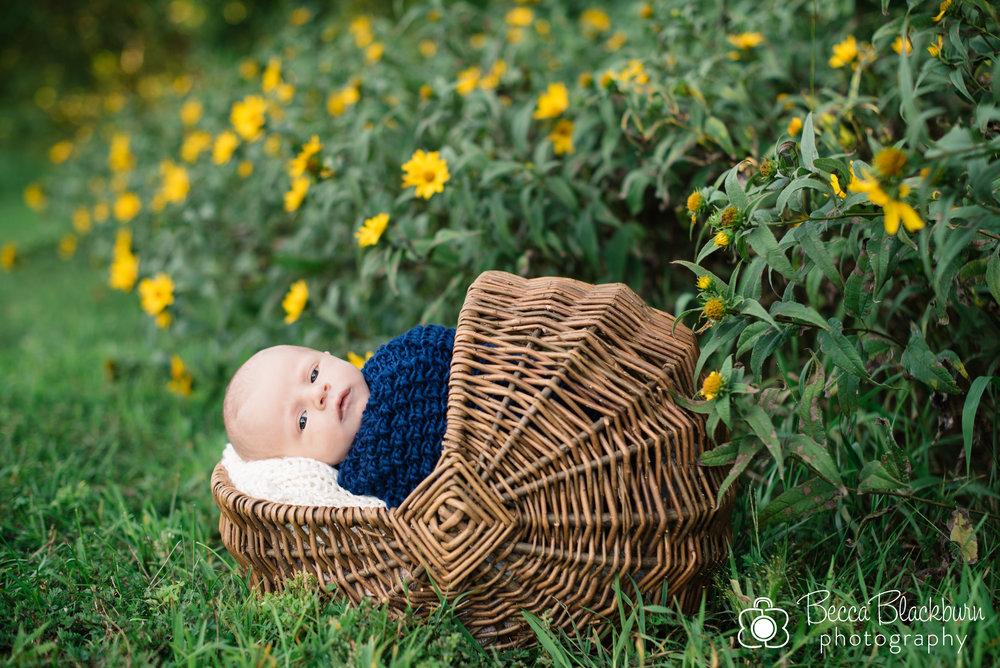 Finn newborn blog-12.jpg
