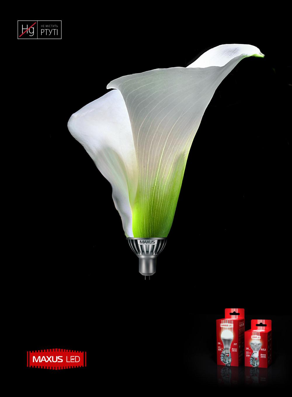 Maxus-LED-Designs-02.jpg