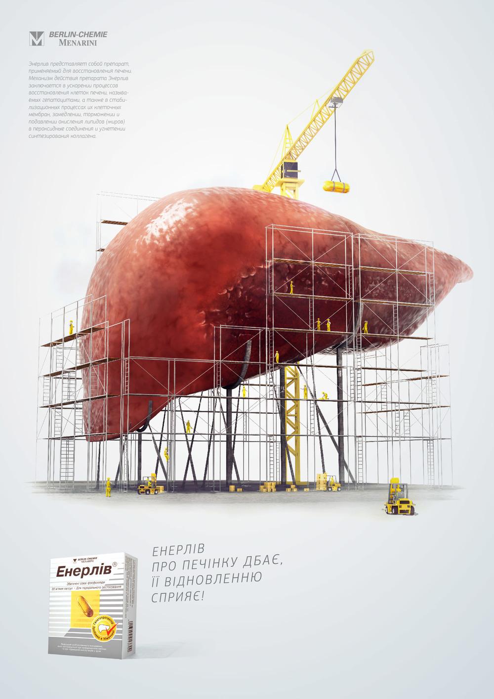 Enerliv | Liver Reconstruction
