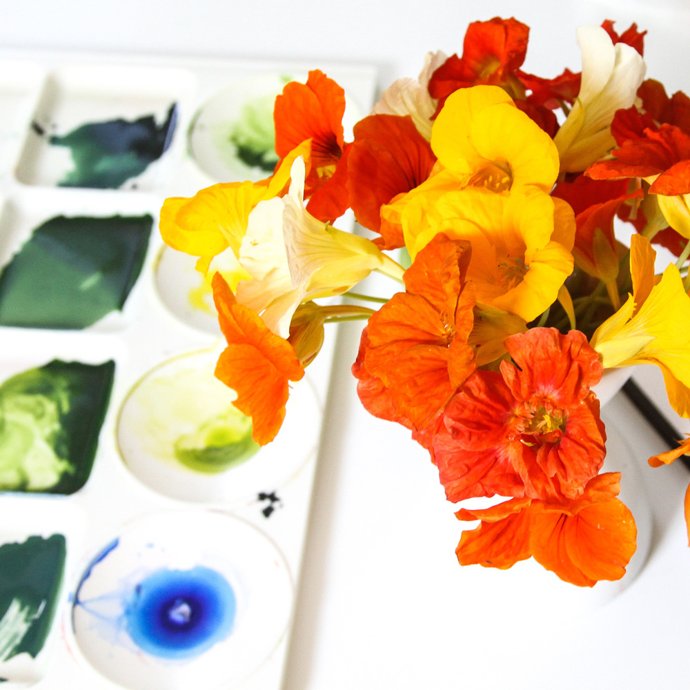 Nasturtiums in My Studio