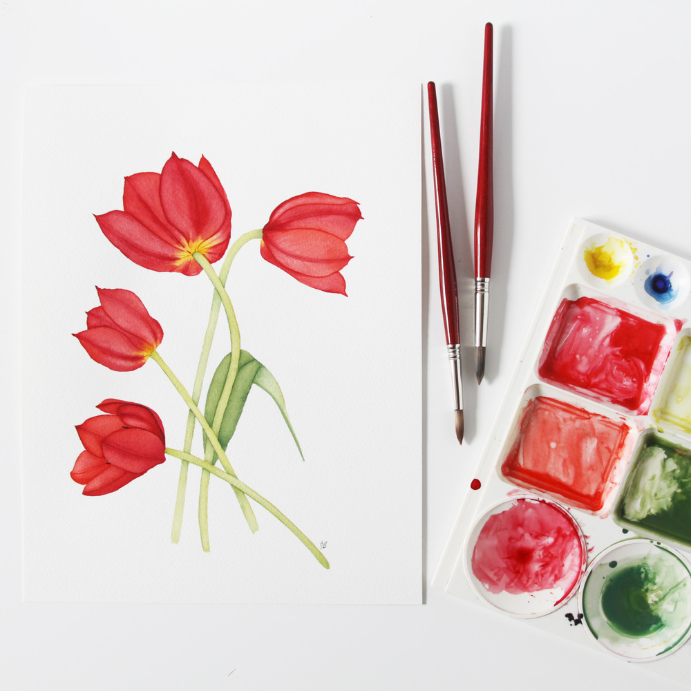 Red Tulips Watercolor Painting