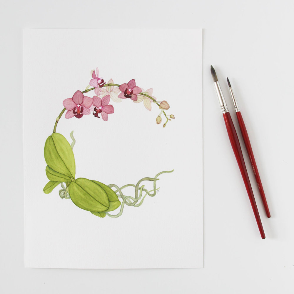 Watercolor Orchid Wreath