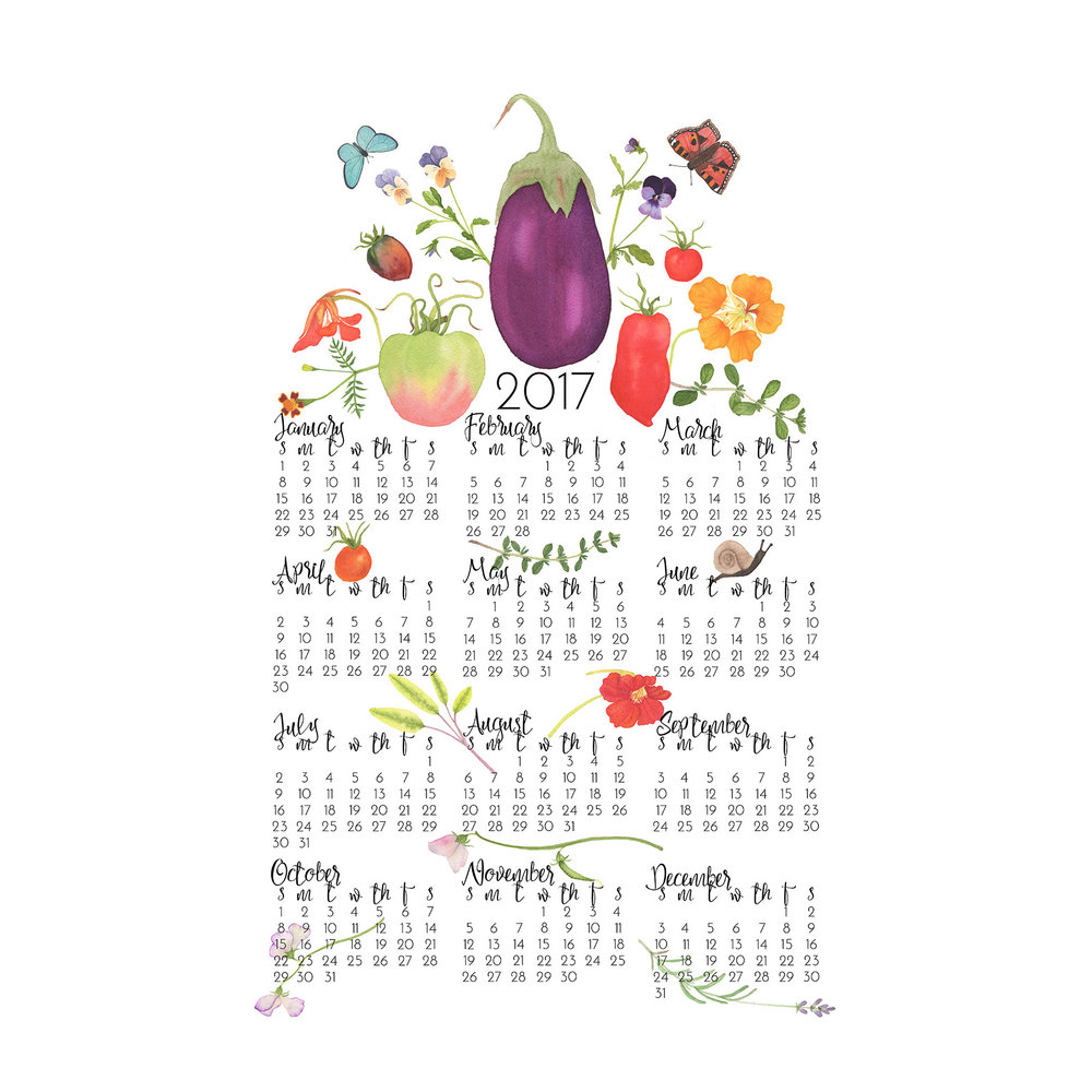 2017 Watercolor Tea Towel Calendar by Anne Butera