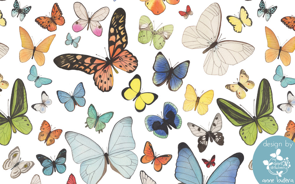 Butterfly Desktop Background