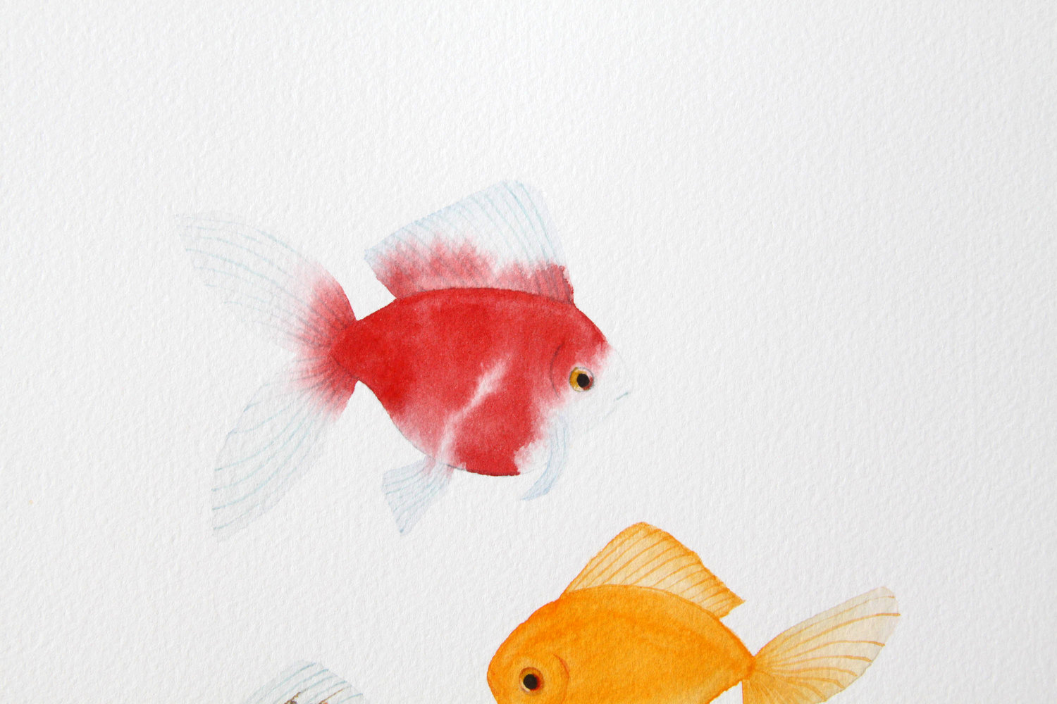 Five Goldfish Watercolor Painting — My Giant Strawberry