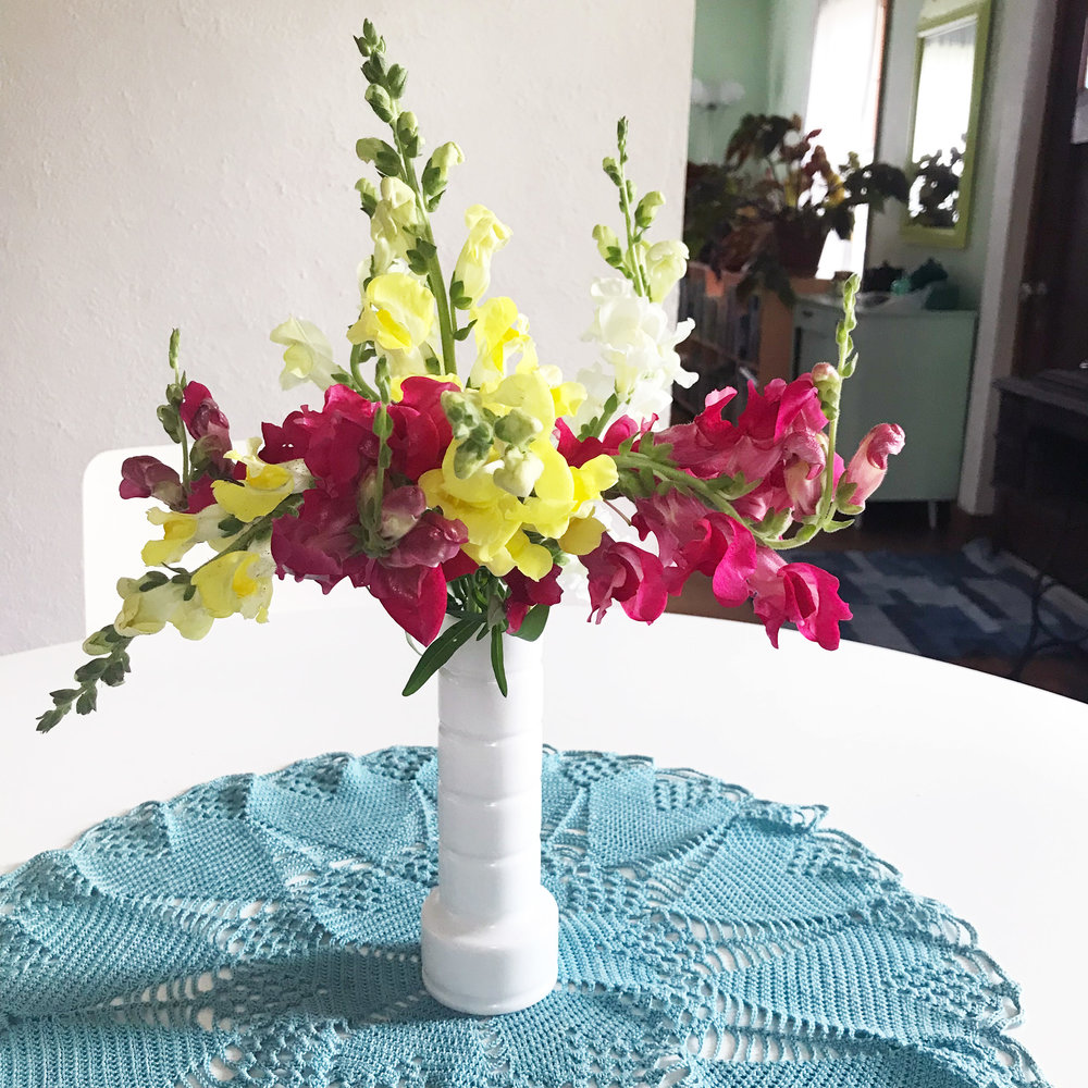 Snapdragons in the Dining Room