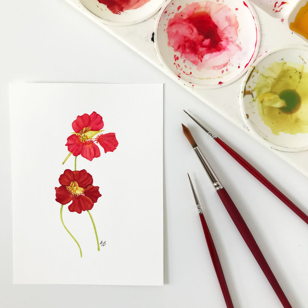 This new little watercolor painting of two nasturtium flowers is now available in my shop