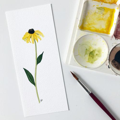 Black Eyed Susan Watercolor Single Flower