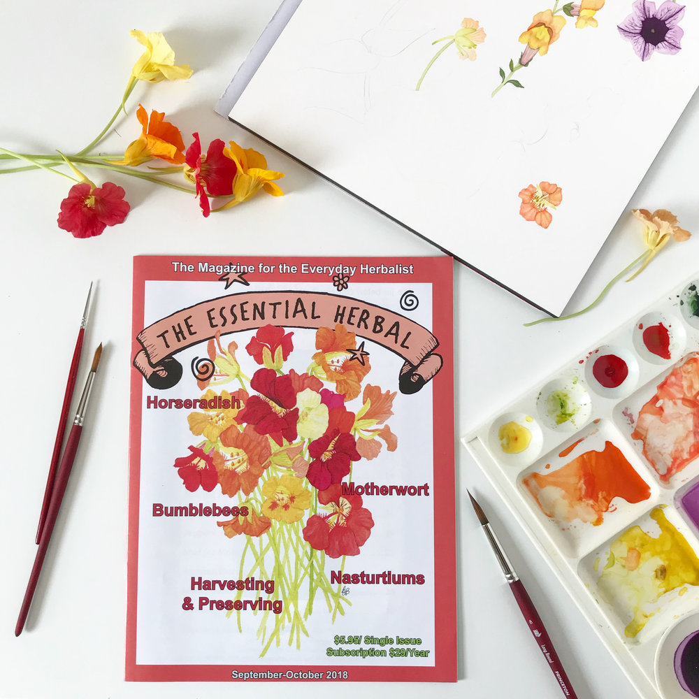 Anne Butera's Nasturtium Painting on the cover of The Essential Herbal Magazine