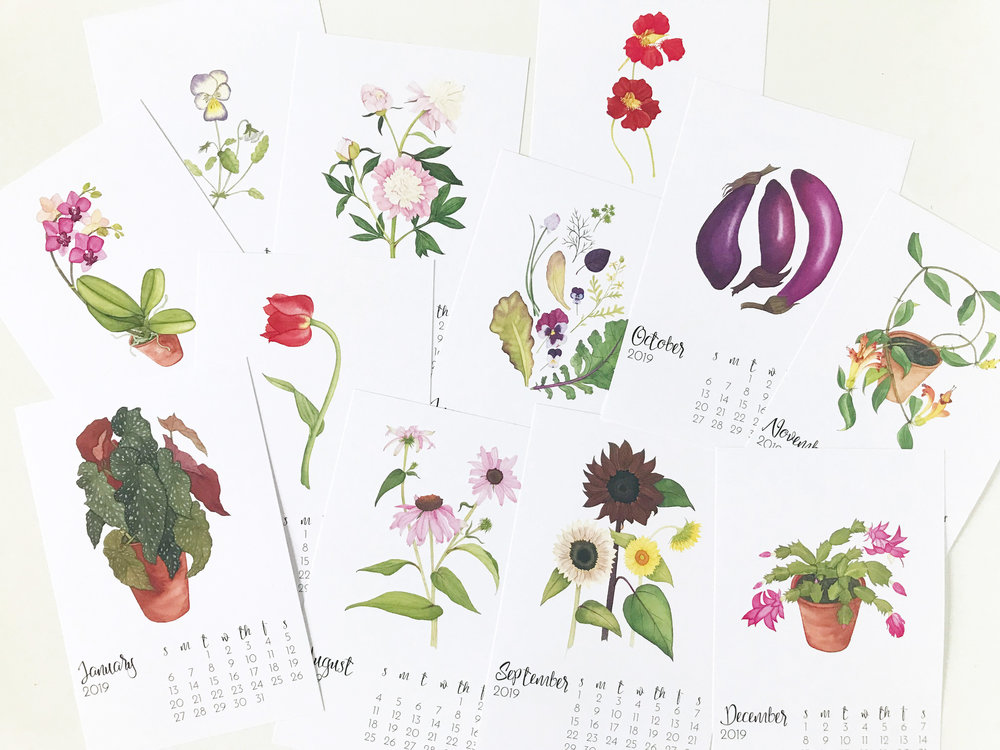 2019 Botanical Watercolor Desk Calendar with Illustrations by Anne Butera