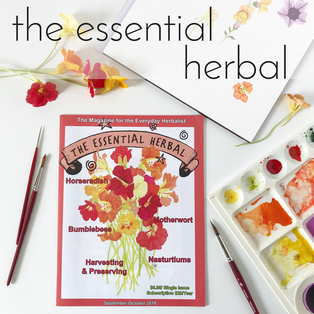 Anne Butera's Nasturtiums Watercolor Painting Was Featured on the Cover of The Essential Herbal Magazine