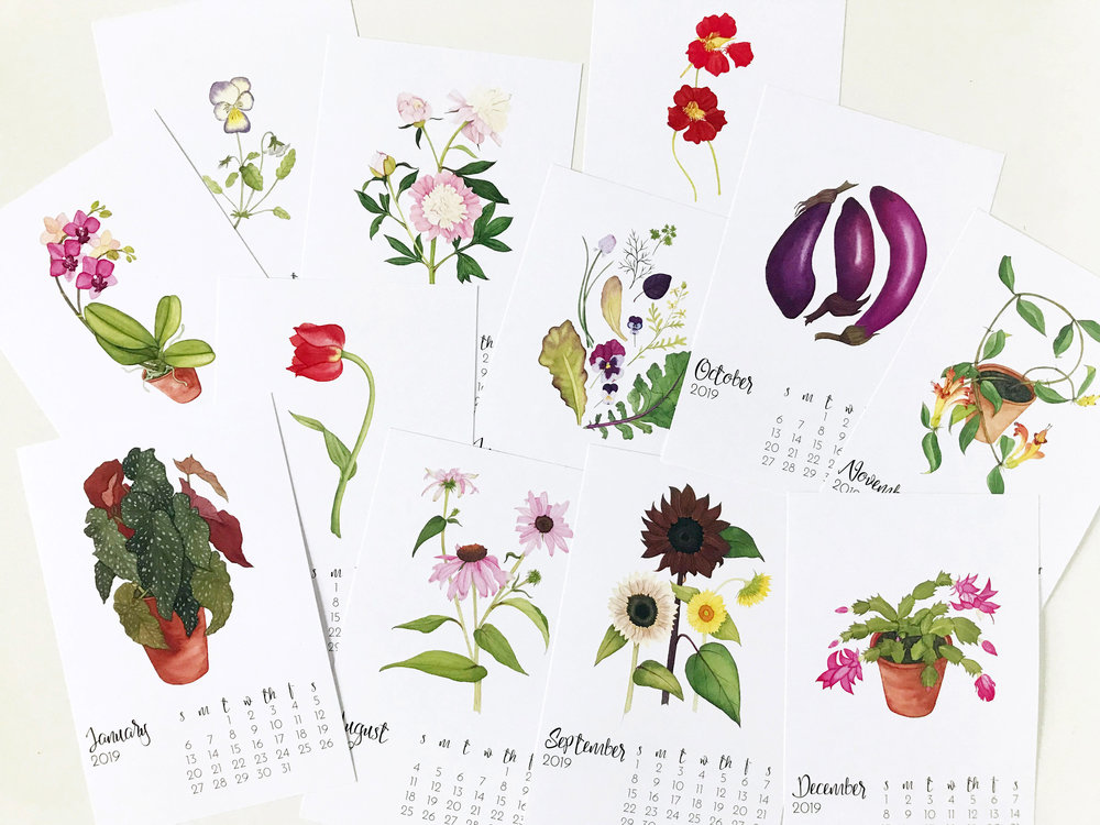 Anne Butera's 2019 Botanical Watercolor Calendar