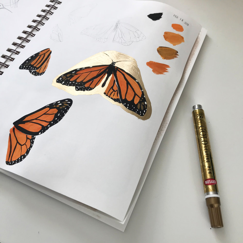 monarch sketches in pencil and acrylic craft paint, decorated with gold leafing pen