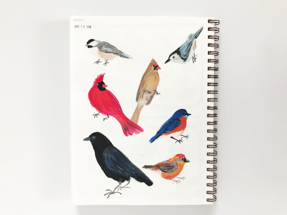 a page of birds in Anne Butera's sketchbook painted with acrylic craft paint