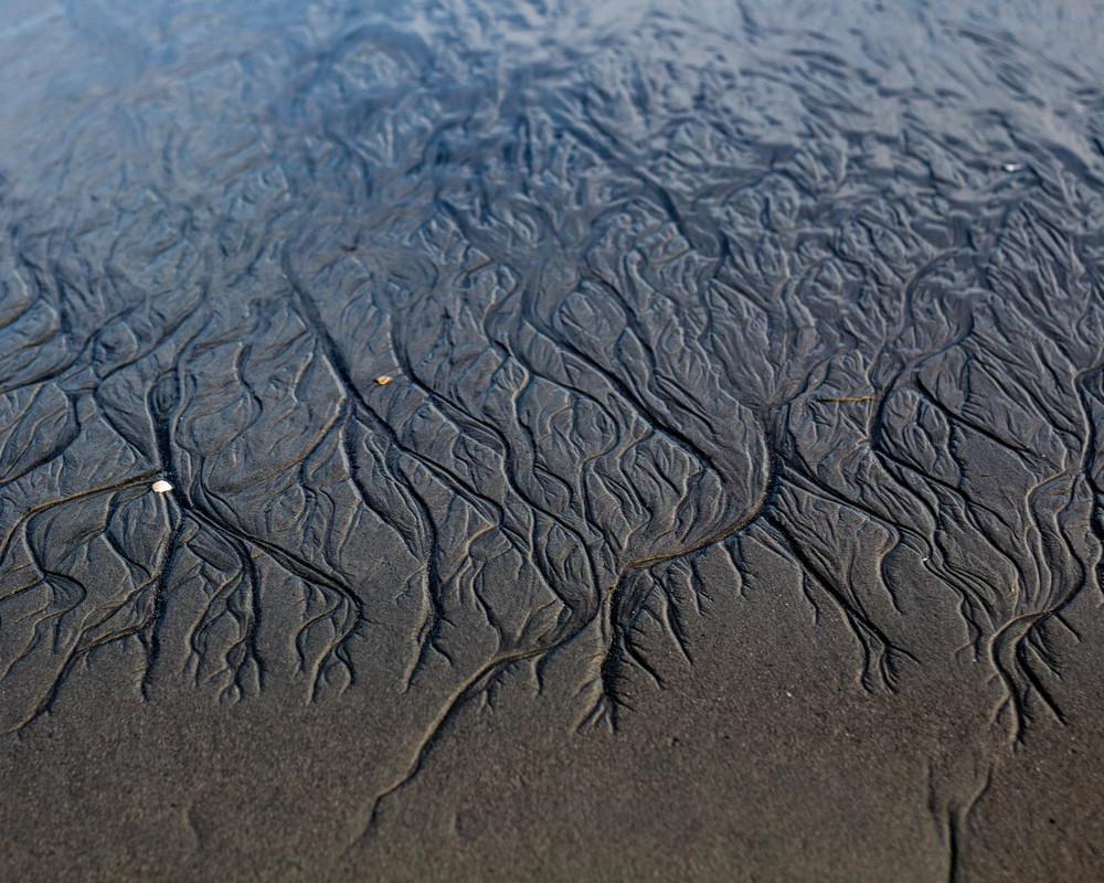 """""""Fingerprints of the Sea"""""""