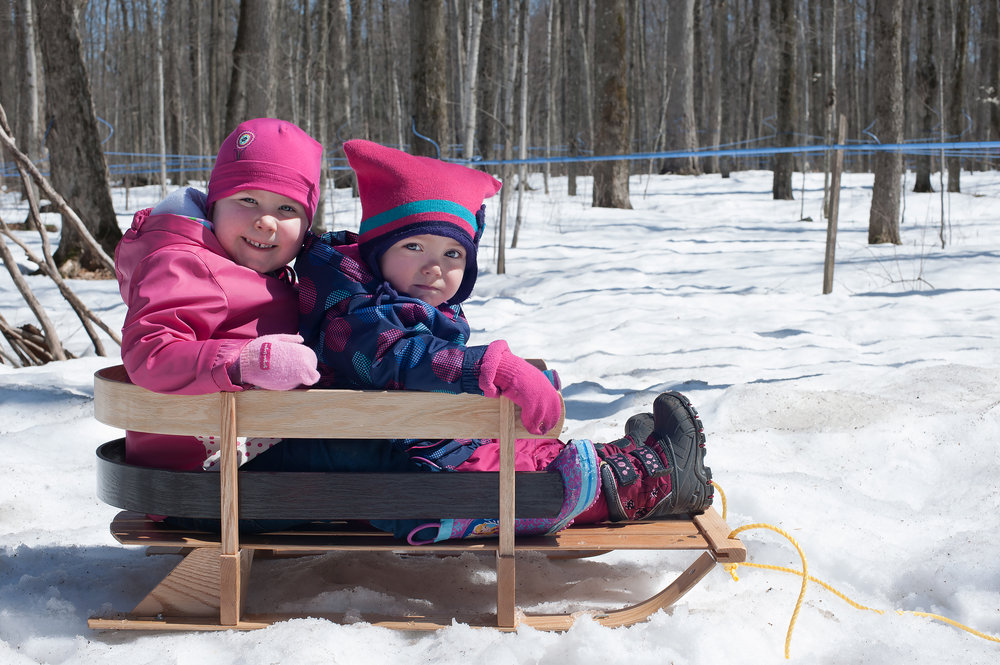 Toddlers on a Baby Sled
