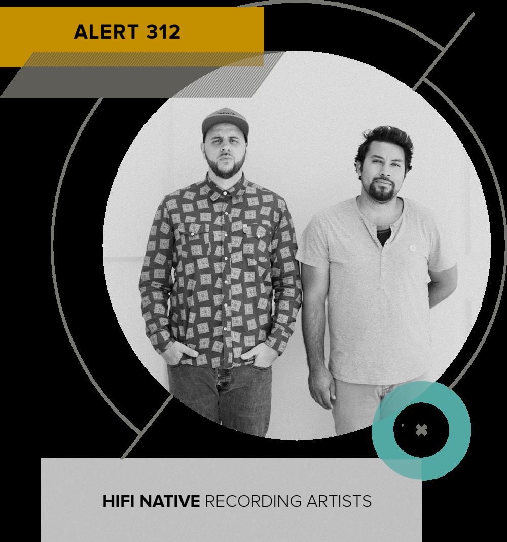 Alert-312.png