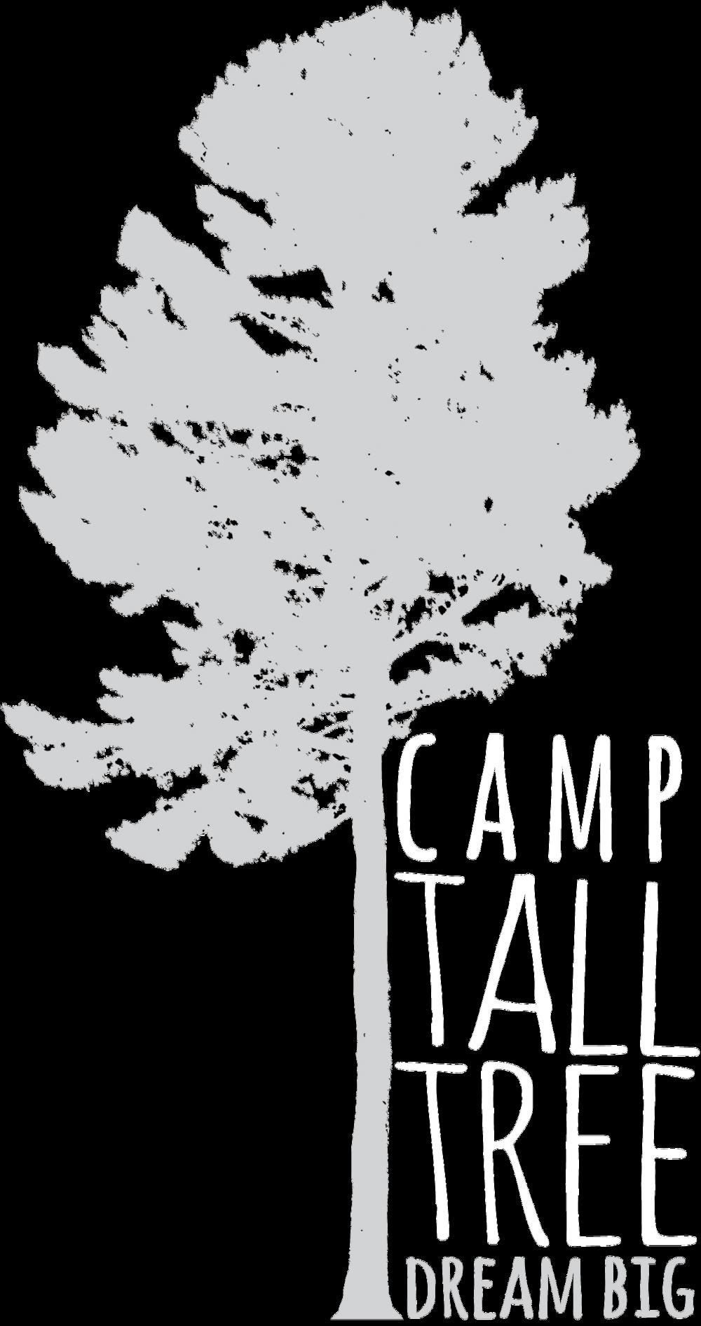 CTT logo white no bckgrd.png