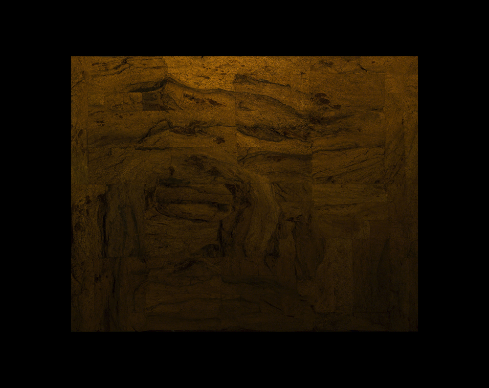 The Physiognomy-continuation (second dimension) 133x105x14cm unfinished artwork pic 3.jpg