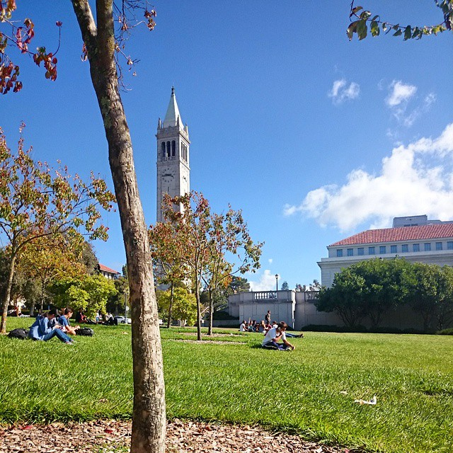 A beautiful day here at #Berkeley. Go #cinebears!