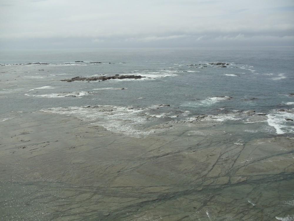 Coast of Kaikoura, en route to seals