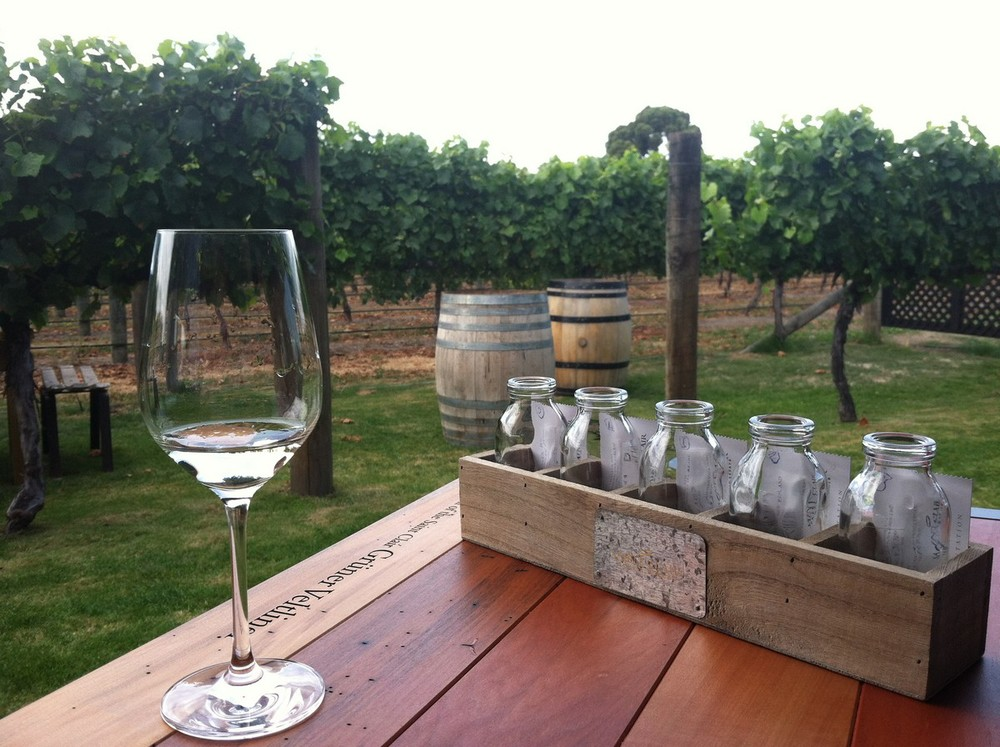 Wine tasting at Saint Claire