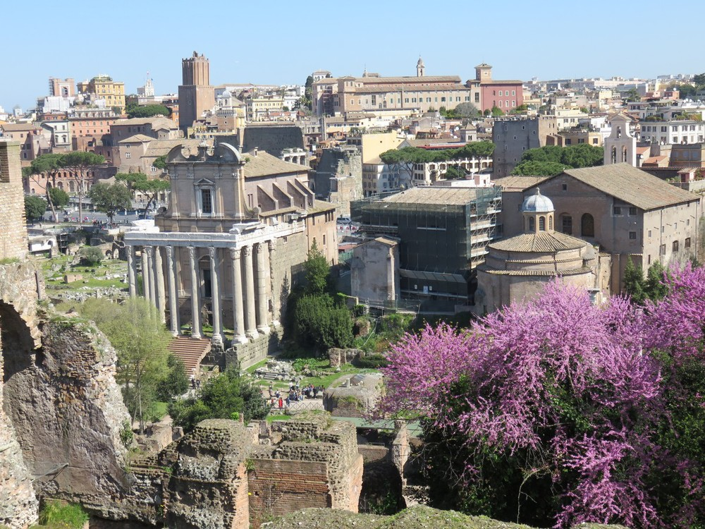 Palantine Hill views of ancient and modern Roma