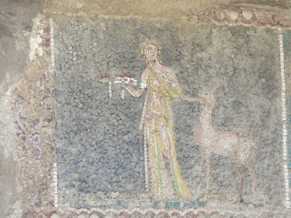 Just a 2000 year old mosaic in Herculaneum. In better shape than my parent's bathroom.