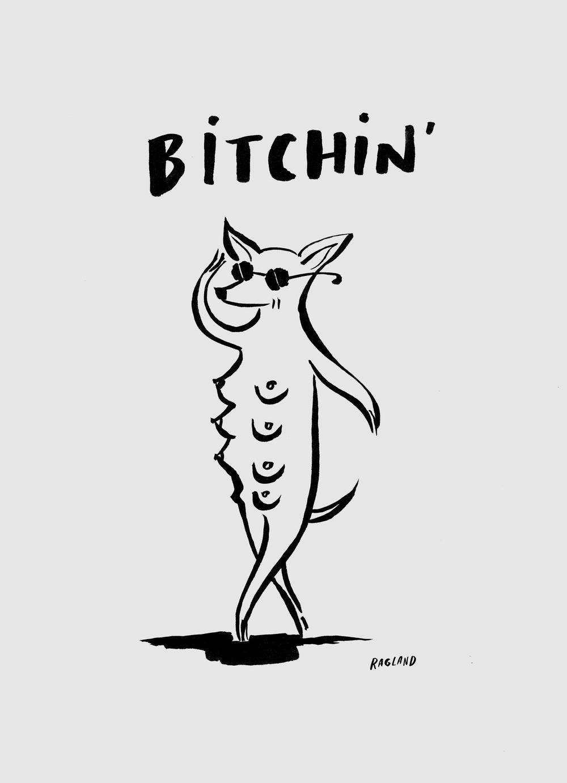 bitchin.jpg