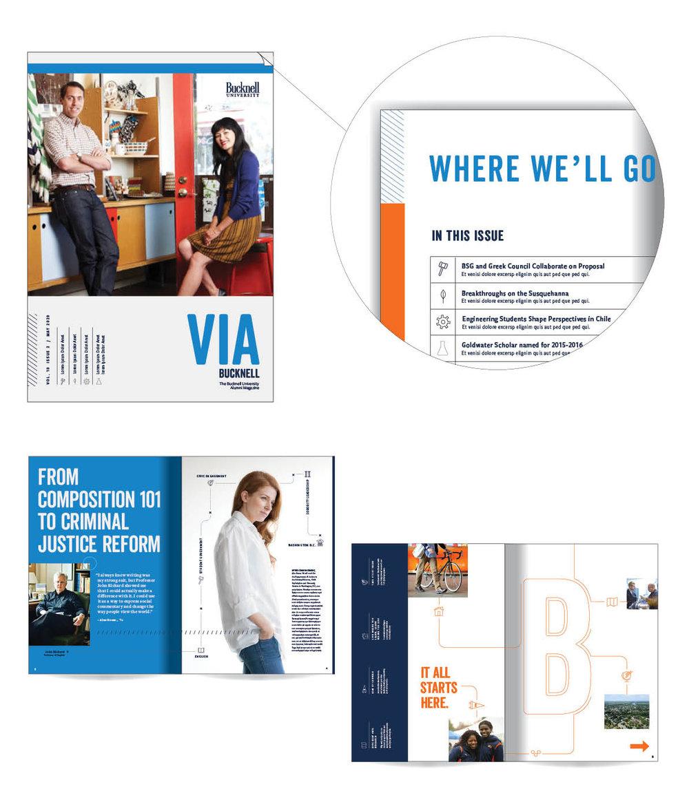 Alumni Magazine Concept