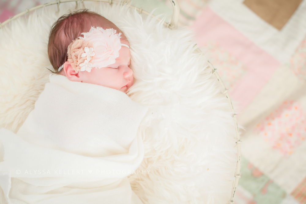 newborn-baby-girl-vancouver-photography-basket-quilt