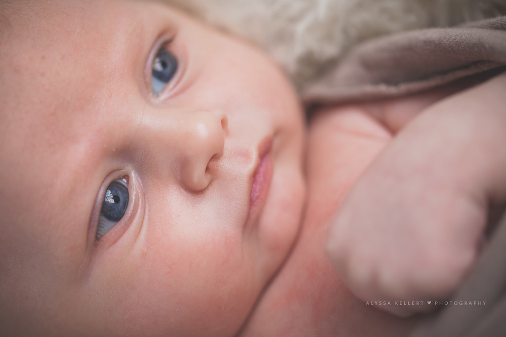 6-week-photography-baby-newborn-boy-abbotsford-gorgeous-natural-light-close-up-macro