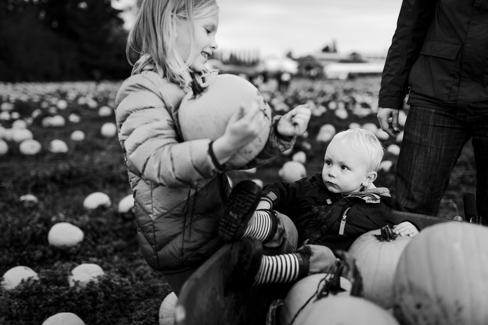 girl putting pumpkin on baby brother in wheelbarrow