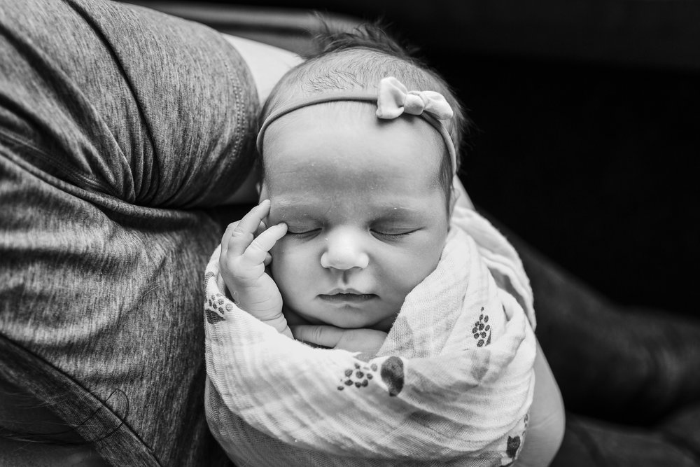 newborn-baby-girl-vancouver-garden-rose-little-unicorn