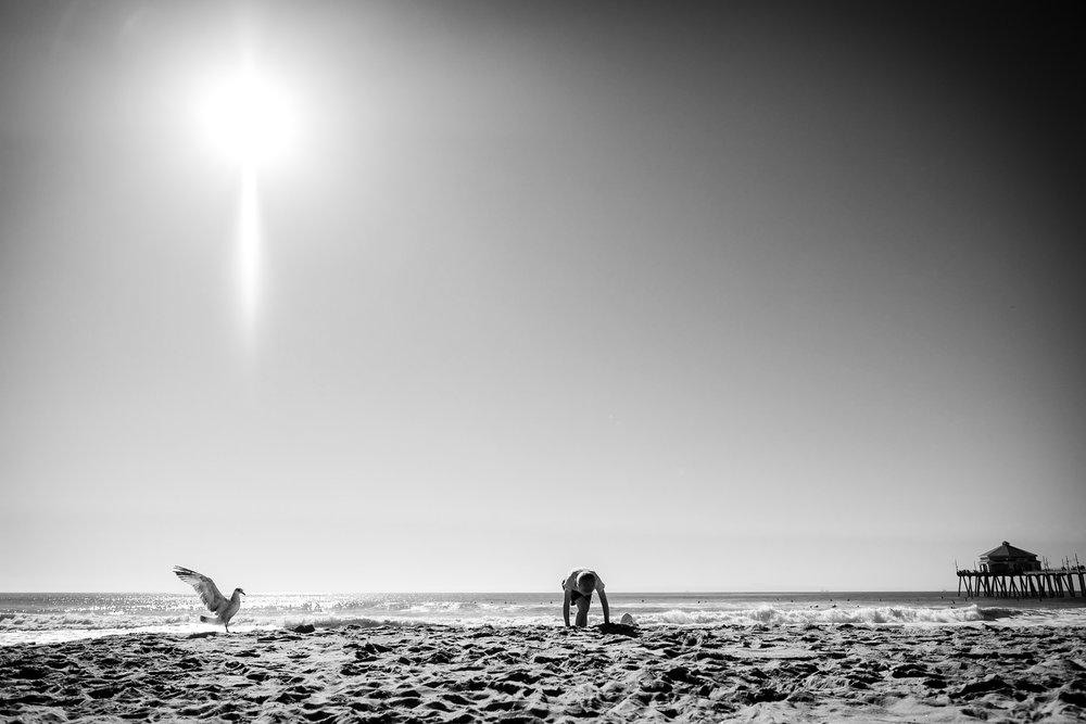 boy on beach beside seagull with wings spread