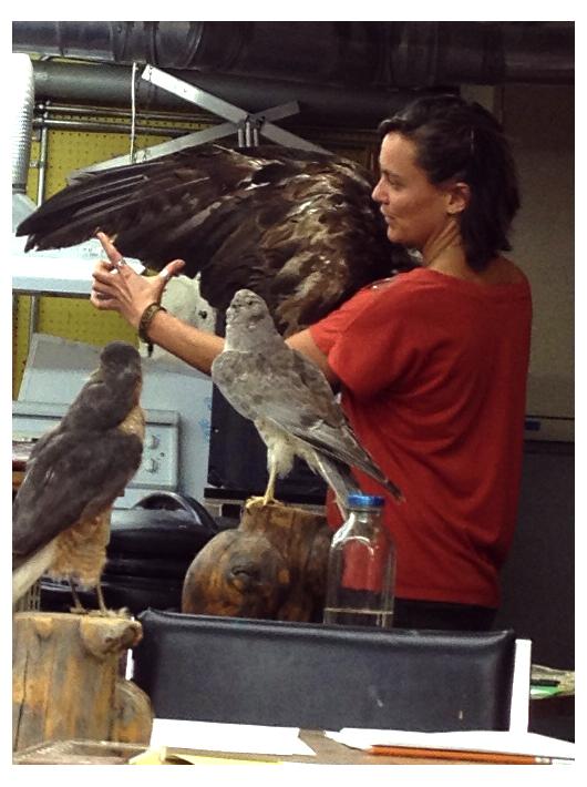 Birds_instructor-web.jpg