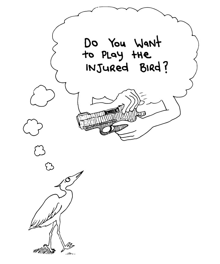 injured-bird