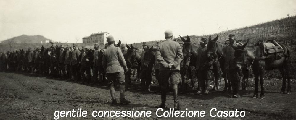 Salmerie italiane pronte per la partenza
