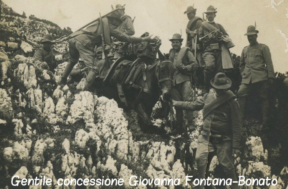cCima 11 1913.jpg