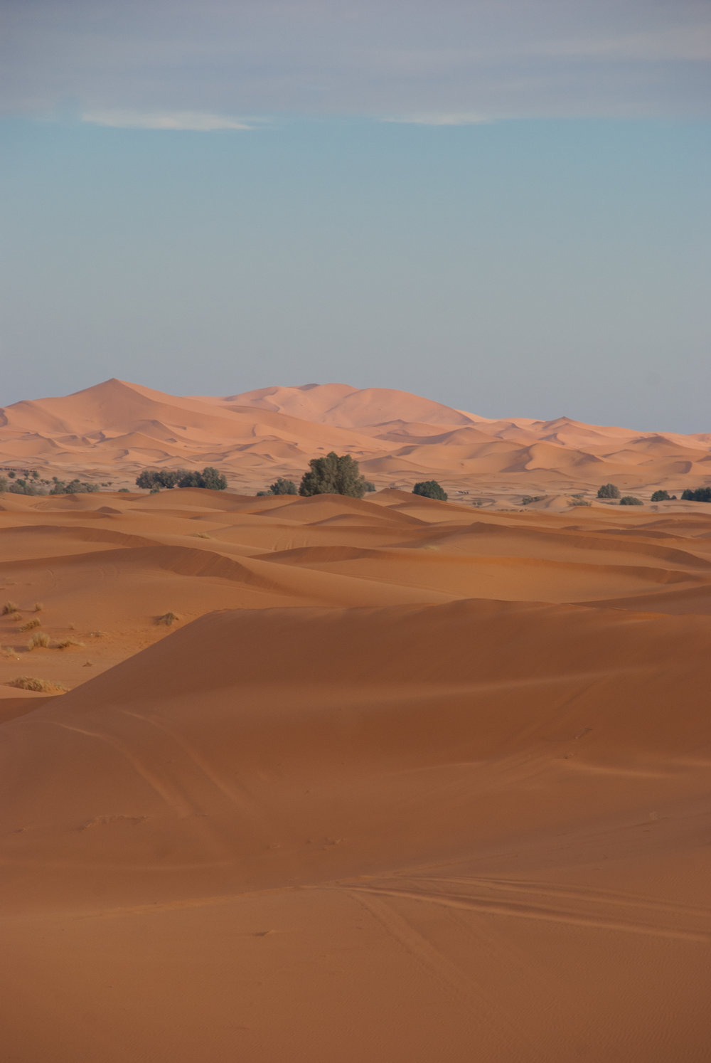 morocco (278 of 433).jpg
