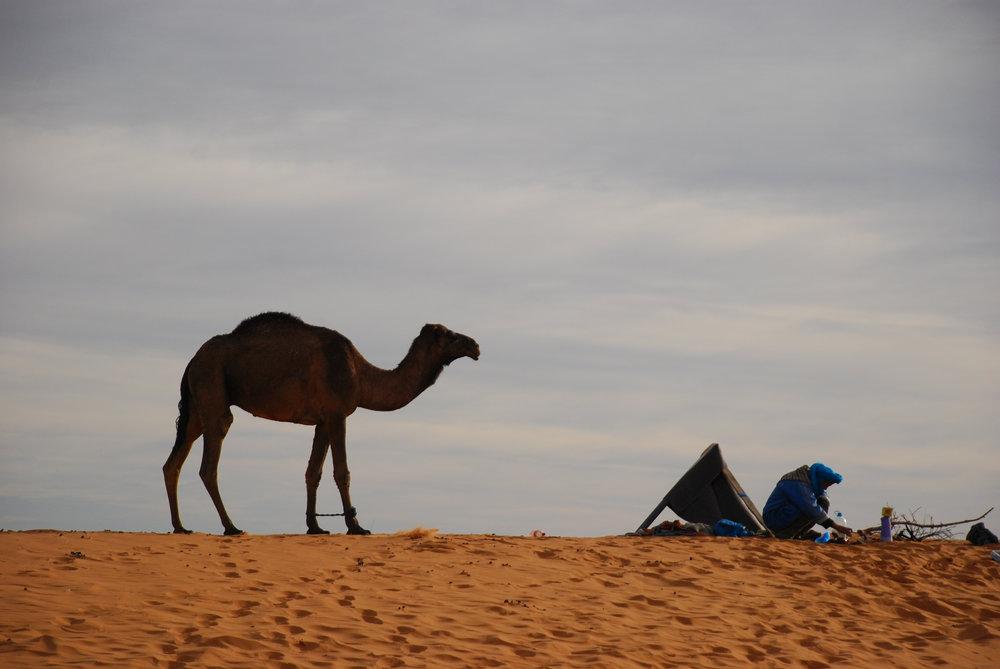 morocco (297 of 433).jpg