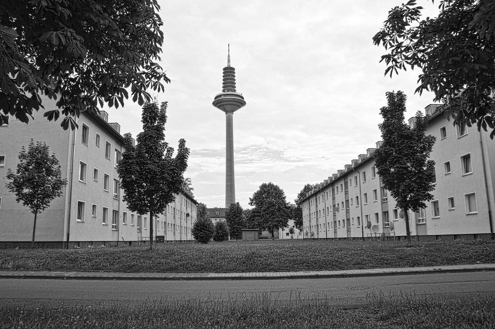 Frankfurt-©Michael-Kleinespel-39.JPG